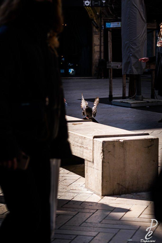 figer un mouvement en photo de rue